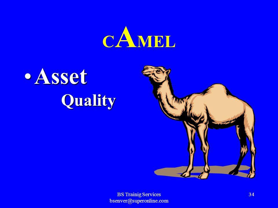 BS Trainig Services bsenver@superonline.com 33 C AMEL Capital AdequacyCapital Adequacy