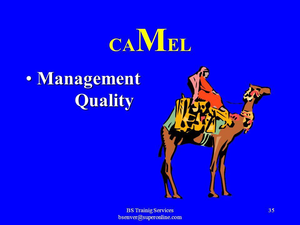 BS Trainig Services bsenver@superonline.com 34 C A MEL Asset QualityAsset Quality