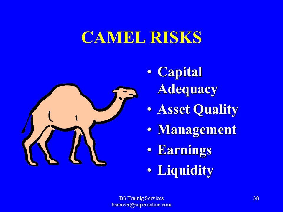 BS Trainig Services bsenver@superonline.com 37 CAME L Liquidity RiskLiquidity Risk