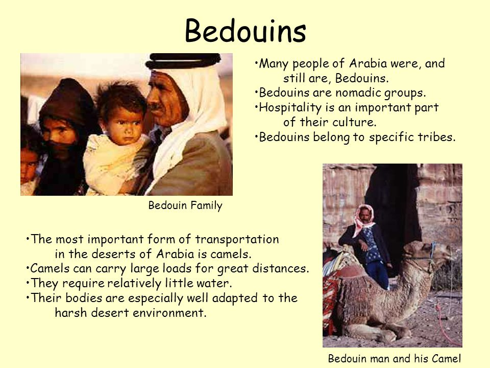 Bedouins Many people of Arabia were, and still are, Bedouins. Bedouins are nomadic groups. Hospitality is an important part of their culture. Bedouins