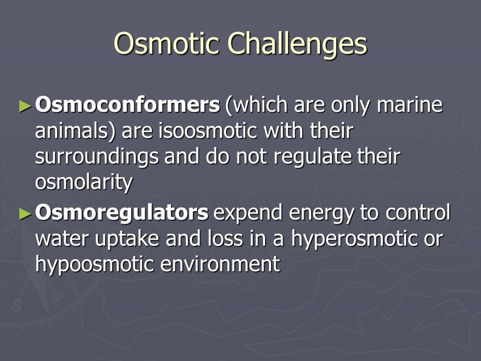 Osmotic Challenges ► Osmoconformers (which are only marine animals) are isoosmotic with their surroundings and do not regulate their osmolarity ► Osmoregulators expend energy to control water uptake and loss in a hyperosmotic or hypoosmotic environment