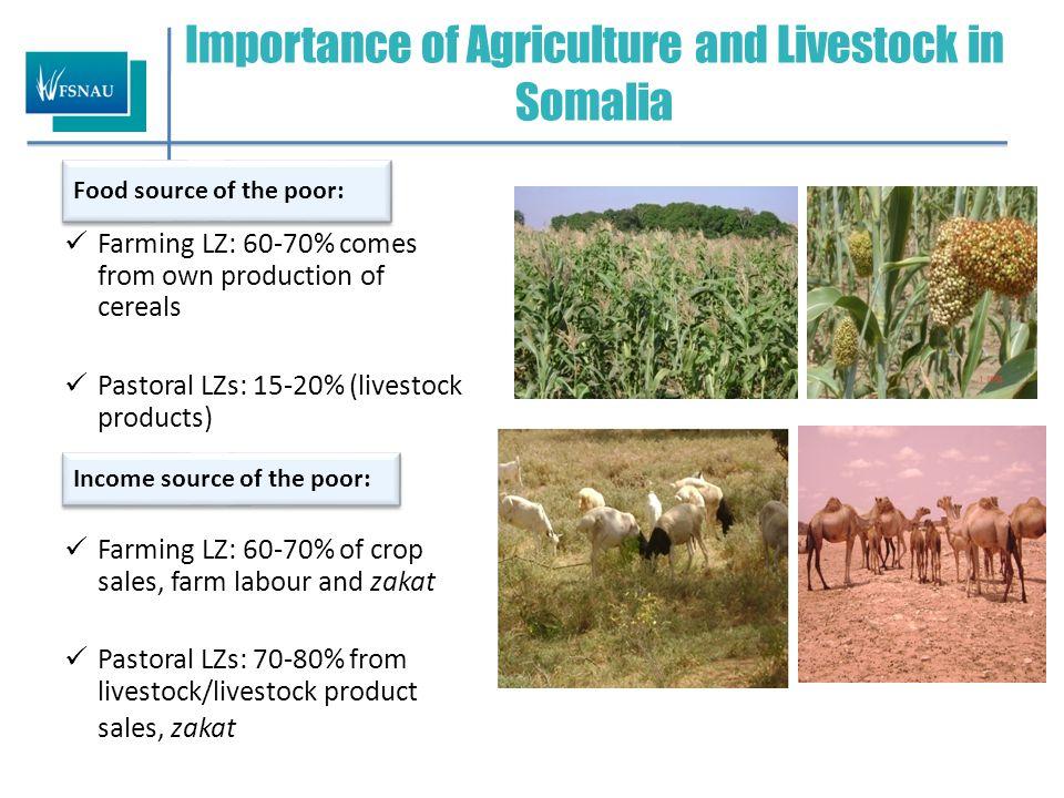 Main Crops and Livestock Species Crop AreasLivestock areas