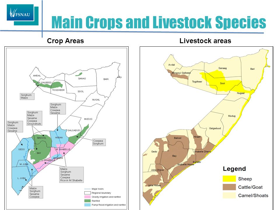 LIVESTOCK Trends in Livestock Holdings and Milk Production RegionConception Calving/kidding ( Gu '11 ) Milk production ( Gu '11 ) Expected calving/ kidding (Jul-Dec '11) Herd Size Projection (up to Dec.