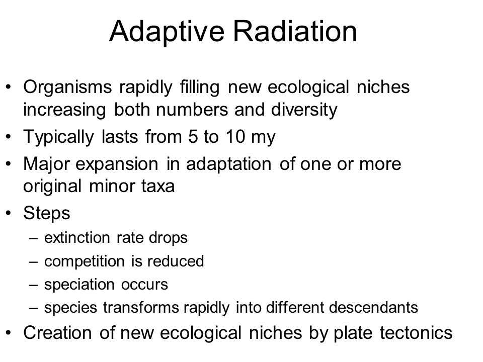 Adaptive Radiation Organisms rapidly filling new ecological niches increasing both numbers and diversity Typically lasts from 5 to 10 my Major expansion in adaptation of one or more original minor taxa Steps –extinction rate drops –competition is reduced –speciation occurs –species transforms rapidly into different descendants Creation of new ecological niches by plate tectonics