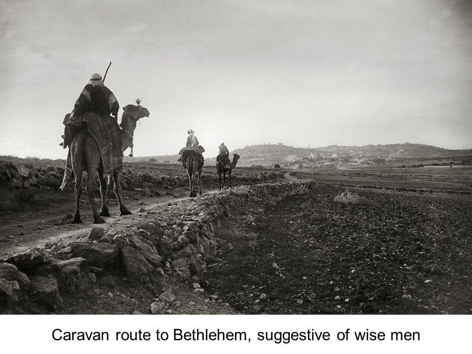 Bethlehem, camel rider approaching in twilight