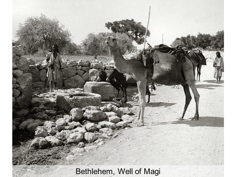 Bethlehem, shepherd with flock