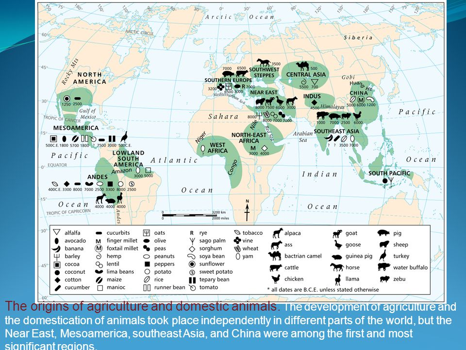 The Neolithic revolution didn't happen abruptly, but emerged gradually as a result of trial and error It first appeared in a few places, not everywhere Most people didn't go through it at first, and some still haven't On the whole, agriculture was the big winner over pastoralism and hunting and gathering