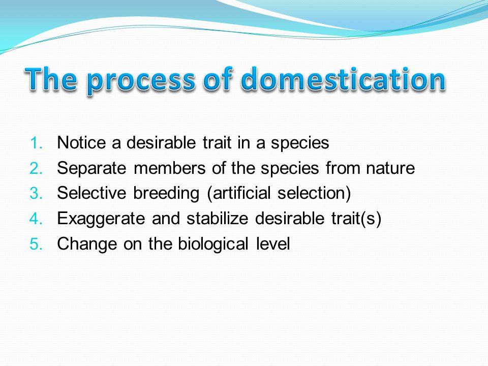 The vulnerability of monoculture Soil destruction Disease The nomad-sedentary conflict Social disruption