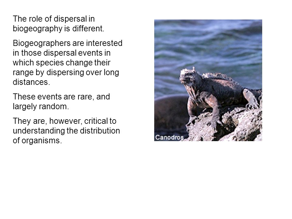 The role of dispersal in biogeography is different.