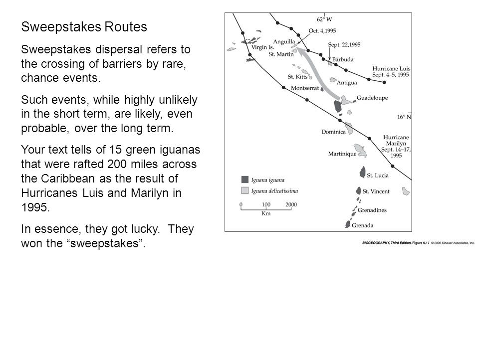 Sweepstakes Routes Sweepstakes dispersal refers to the crossing of barriers by rare, chance events.