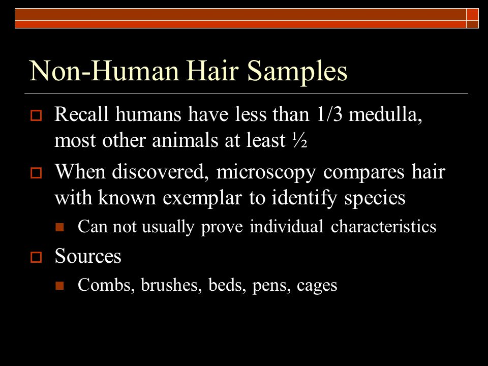 Non-Human Hair Samples  Recall humans have less than 1/3 medulla, most other animals at least ½  When discovered, microscopy compares hair with known exemplar to identify species Can not usually prove individual characteristics  Sources Combs, brushes, beds, pens, cages