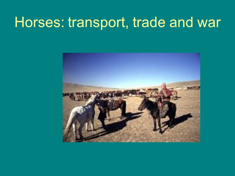 Horses: transport, trade and war