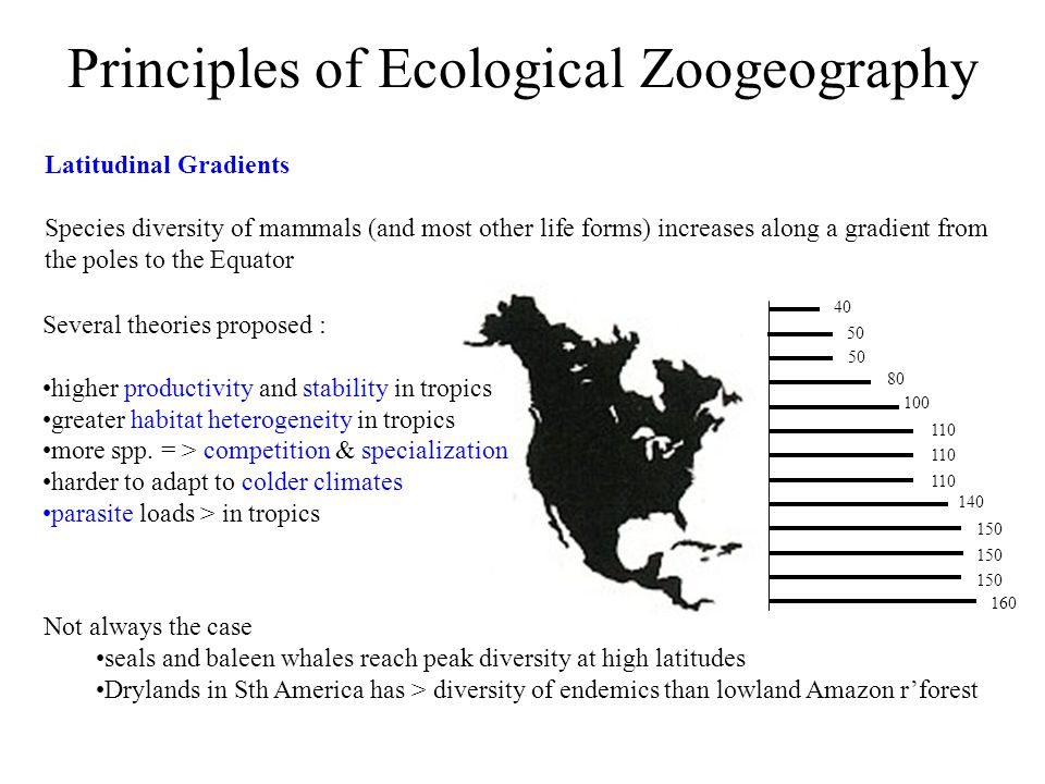 Principles of Ecological Zoogeography Latitudinal Gradients Species diversity of mammals (and most other life forms) increases along a gradient from the poles to the Equator Several theories proposed : higher productivity and stability in tropics greater habitat heterogeneity in tropics more spp.