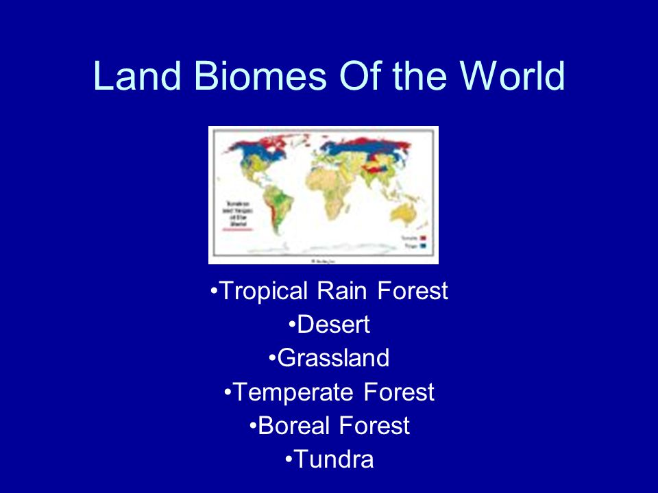 Land Biomes Of the World Tropical Rain Forest Desert Grassland Temperate Forest Boreal Forest Tundra
