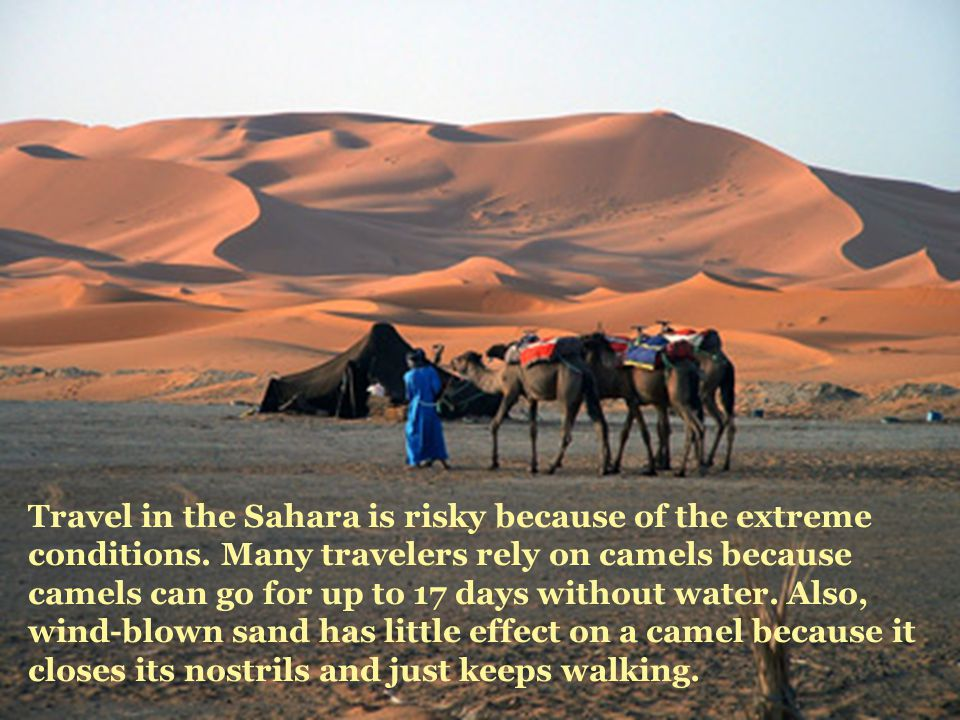 Travel in the Sahara is risky because of the extreme conditions.