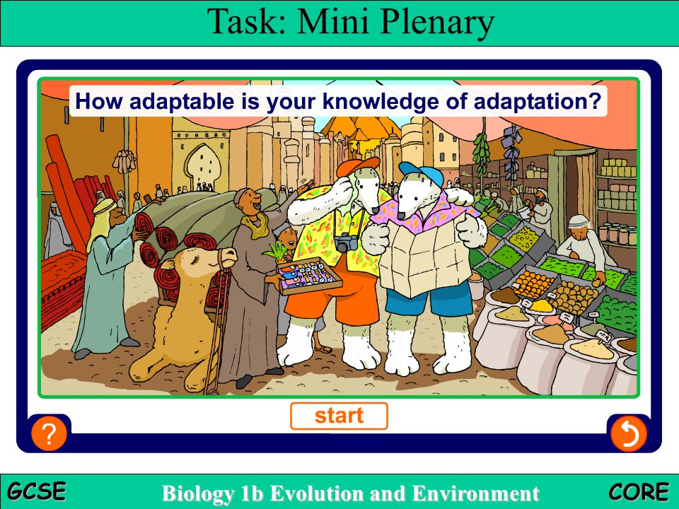 Biology 1b Evolution and Environment GCSE CORE Multiple-choice quiz Task: Mini Plenary