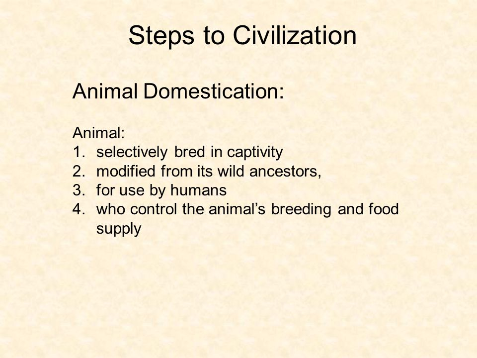 Steps to Civilization Animal Domestication: Animal: 1.selectively bred in captivity 2.modified from its wild ancestors, 3.for use by humans 4.who cont