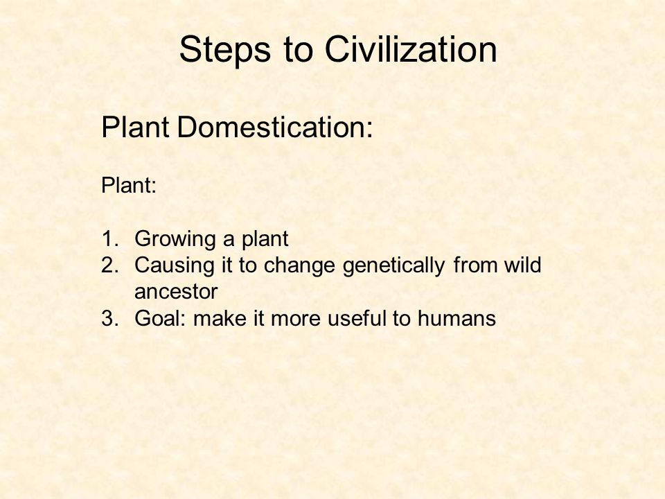 Steps to Civilization Plant Domestication: Plant: 1.Growing a plant 2.Causing it to change genetically from wild ancestor 3.Goal: make it more useful