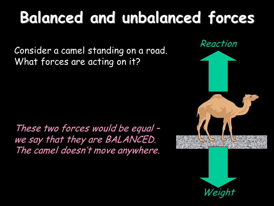 Balanced and unbalanced forces Consider a camel standing on a road.