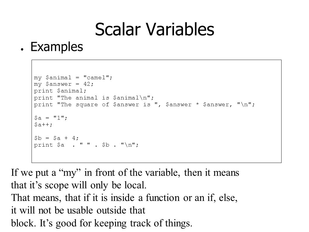 Scalar Variables ● Examples my $animal =