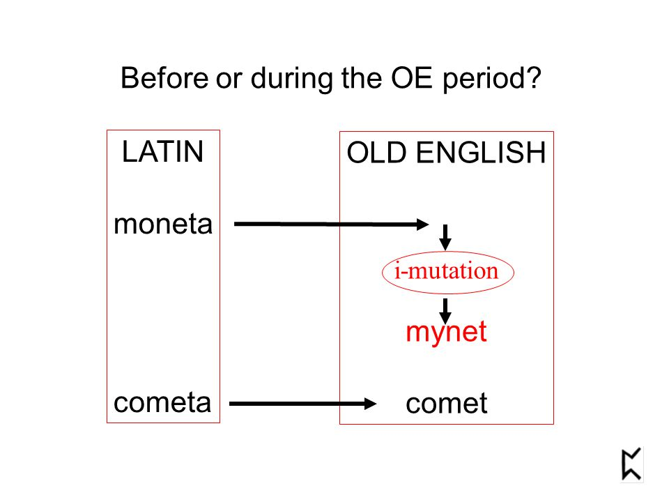 Before or during the OE period LATIN moneta cometa OLD ENGLISH mynet comet i-mutation