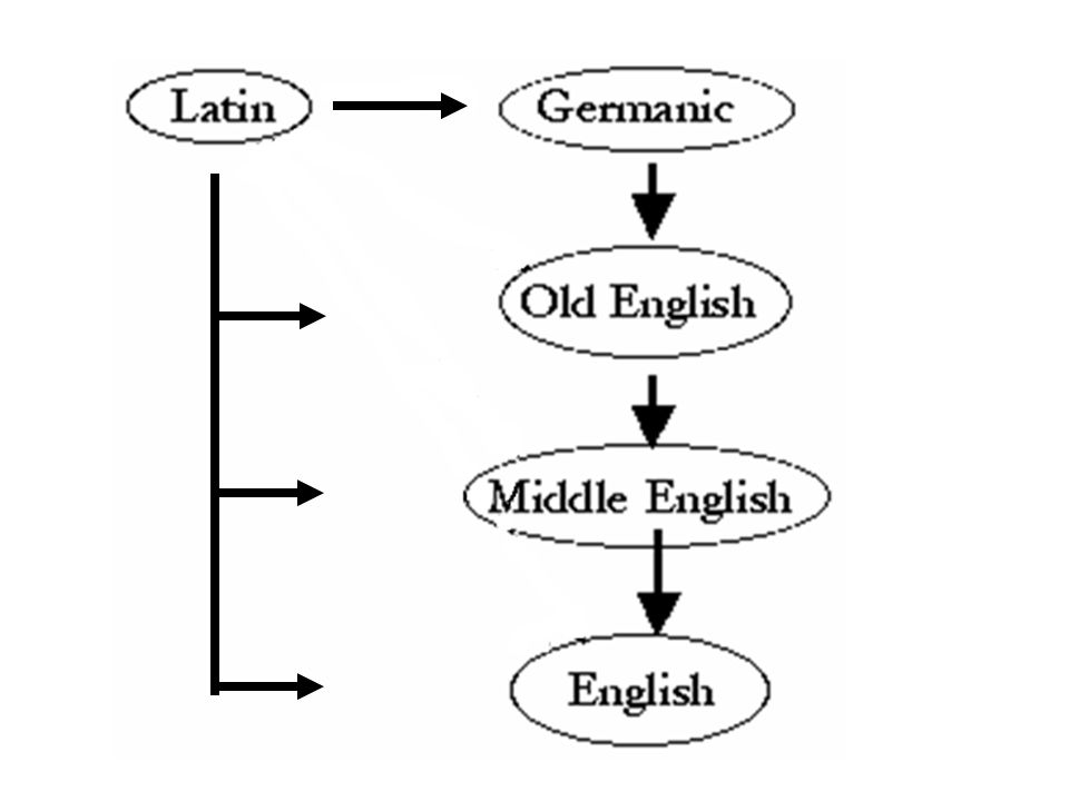 into Germanic into Old English into Middle English into Early Modern English
