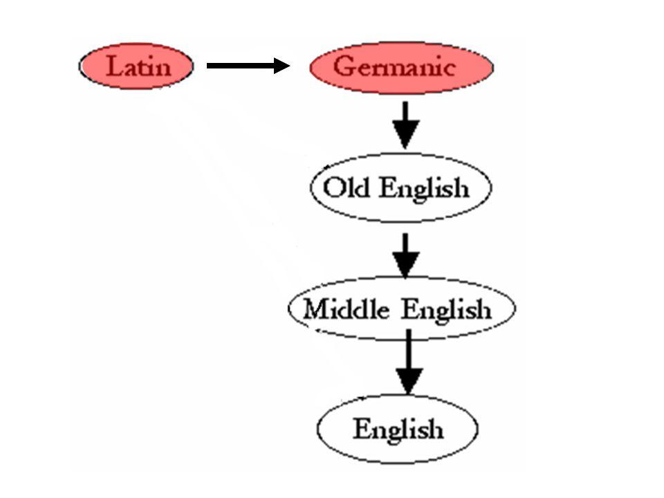 1. Latin Loans: into Germanic LatinOE vallum wall weall arca chest earc calcem lime cealc chalk