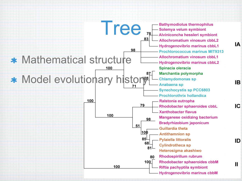 Relative recency of common ancestry