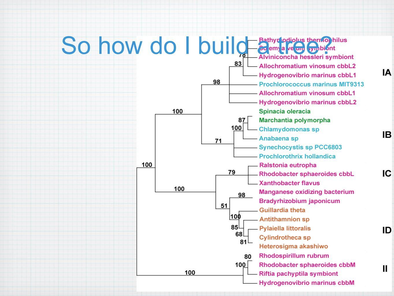 So how do I build a tree?