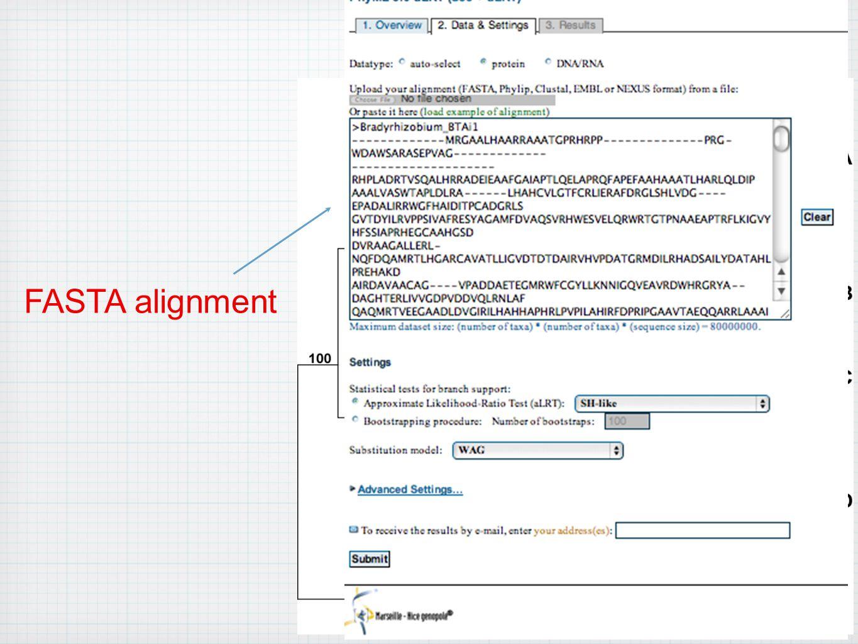 FASTA alignment