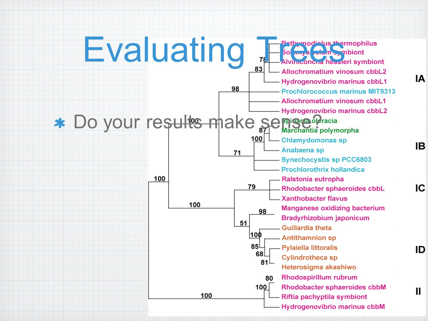 Evaluating Trees Do your results make sense