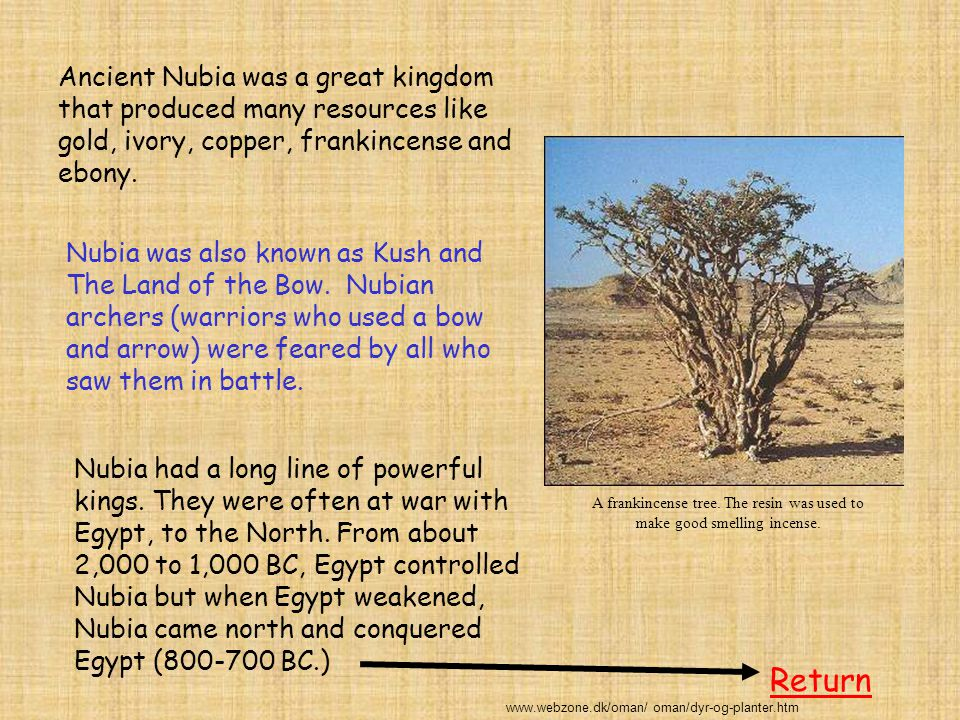 Ancient Nubia was a great kingdom that produced many resources like gold, ivory, copper, frankincense and ebony. Nubia was also known as Kush and The