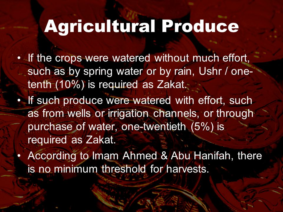 Agricultural Produce If the crops were watered without much effort, such as by spring water or by rain, Ushr / one- tenth (10%) is required as Zakat.