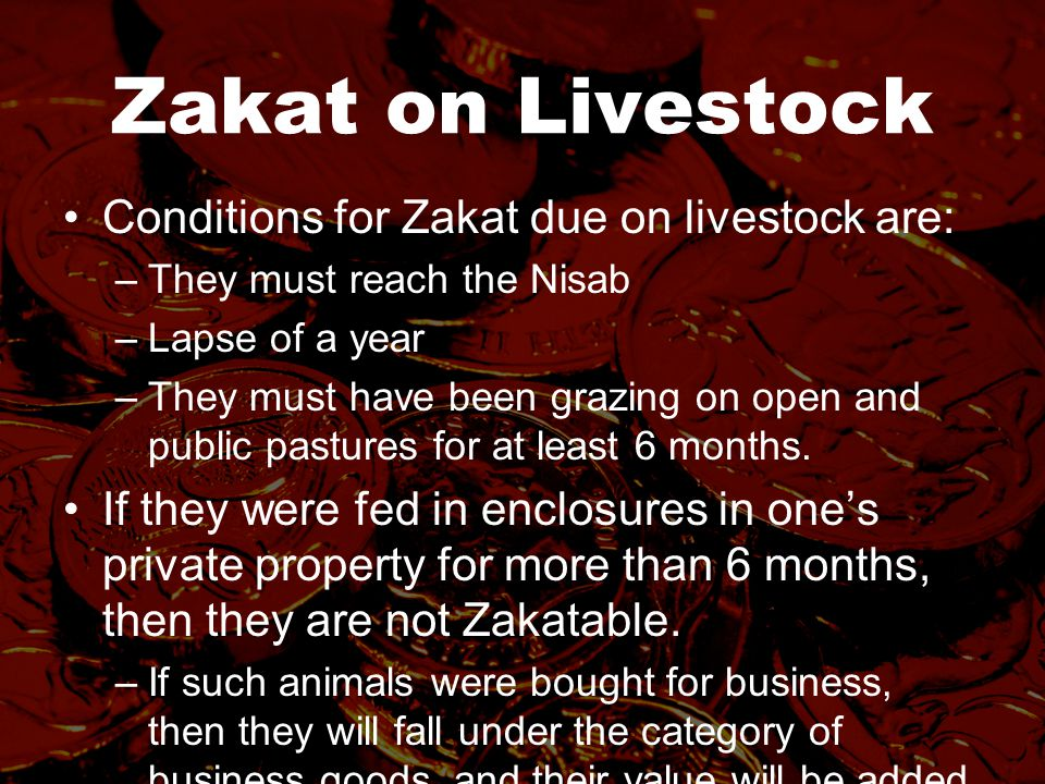 Zakat on Livestock Conditions for Zakat due on livestock are: –They must reach the Nisab –Lapse of a year –They must have been grazing on open and public pastures for at least 6 months.
