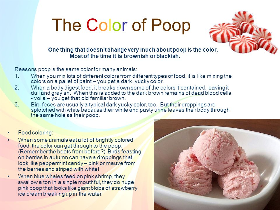 The Color of Poop One thing that doesn't change very much about poop is the color.
