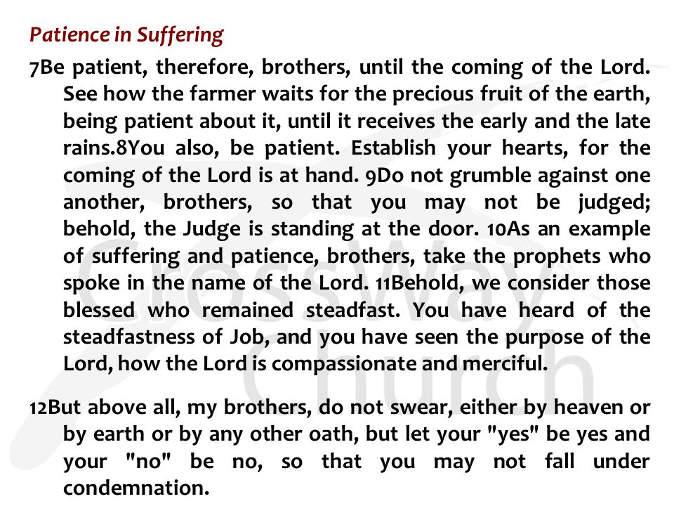 Patience in Suffering 7Be patient, therefore, brothers, until the coming of the Lord.
