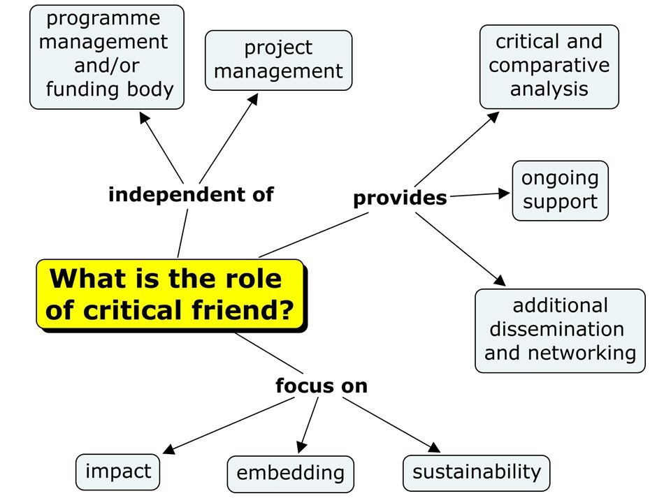 How the Critical Friend role has developed eLIDA CAMEL project.