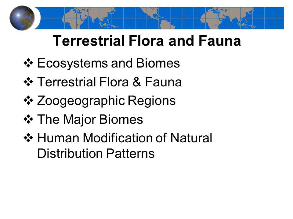 Tropical Rainforest –Distribution –Climate types –Main vegetation types –Fig. 11-26