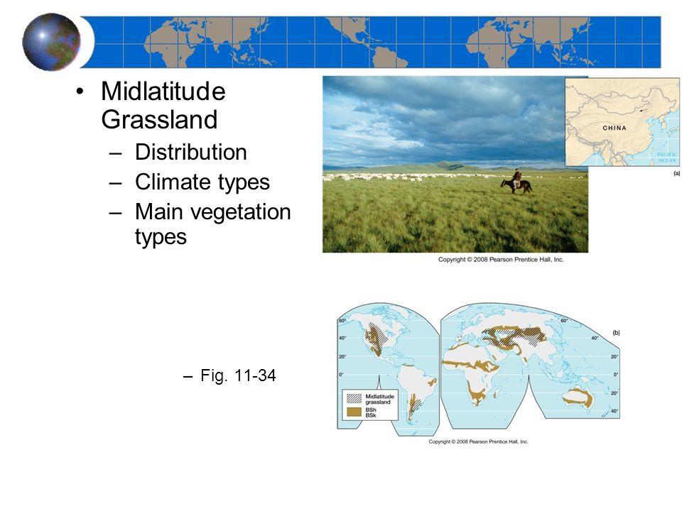 Midlatitude Grassland –Distribution –Climate types –Main vegetation types –Fig. 11-34