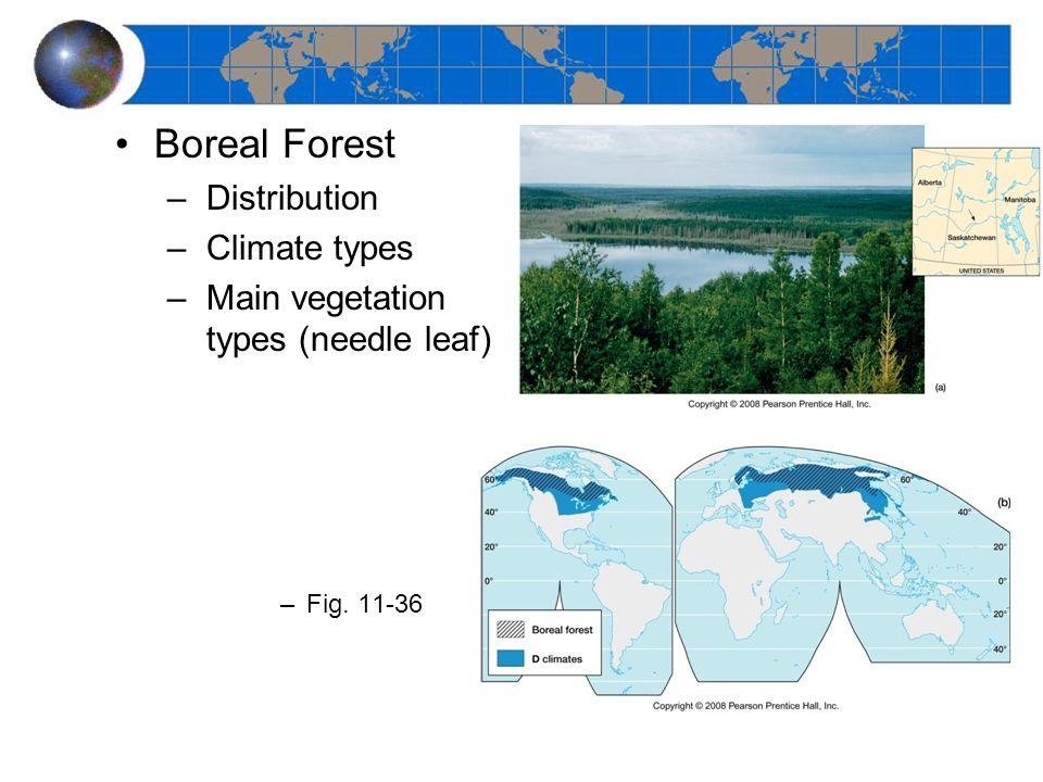 Boreal Forest –Distribution –Climate types –Main vegetation types (needle leaf) –Fig. 11-36