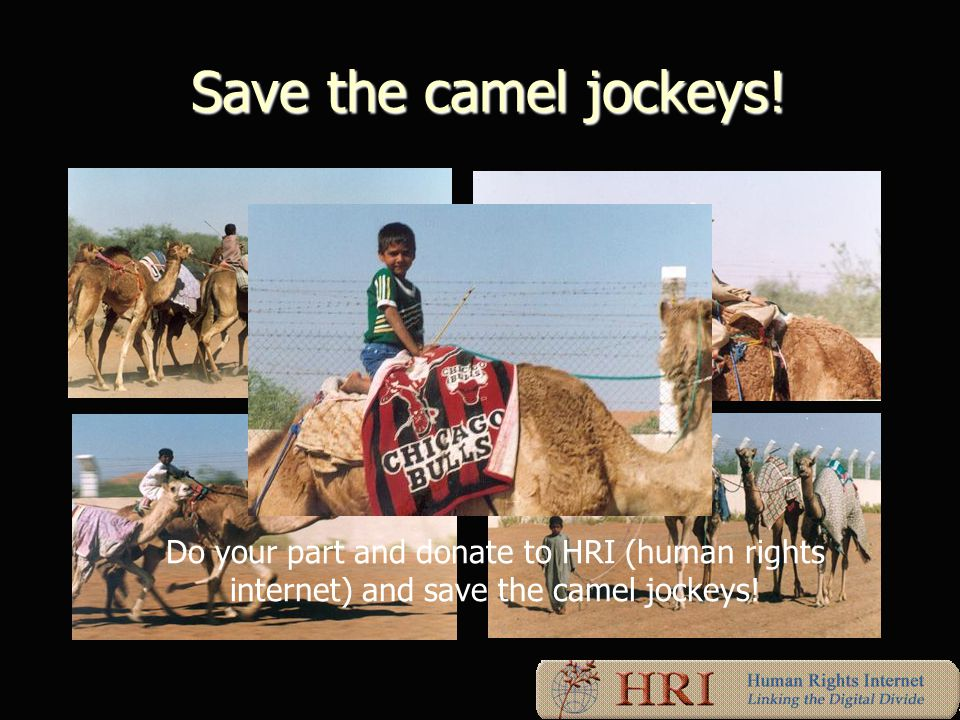 Save the camel jockeys. Save the camel jockeys.