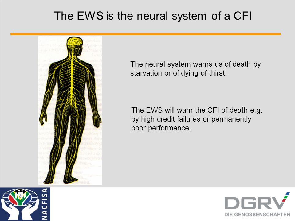 The EWS is the neural system of a CFI The neural system warns us of death by starvation or of dying of thirst.