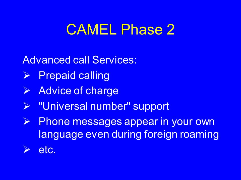 CAMEL Phase 2 Advanced call Services:  Prepaid calling  Advice of charge  Universal number support  Phone messages appear in your own language even during foreign roaming  etc.