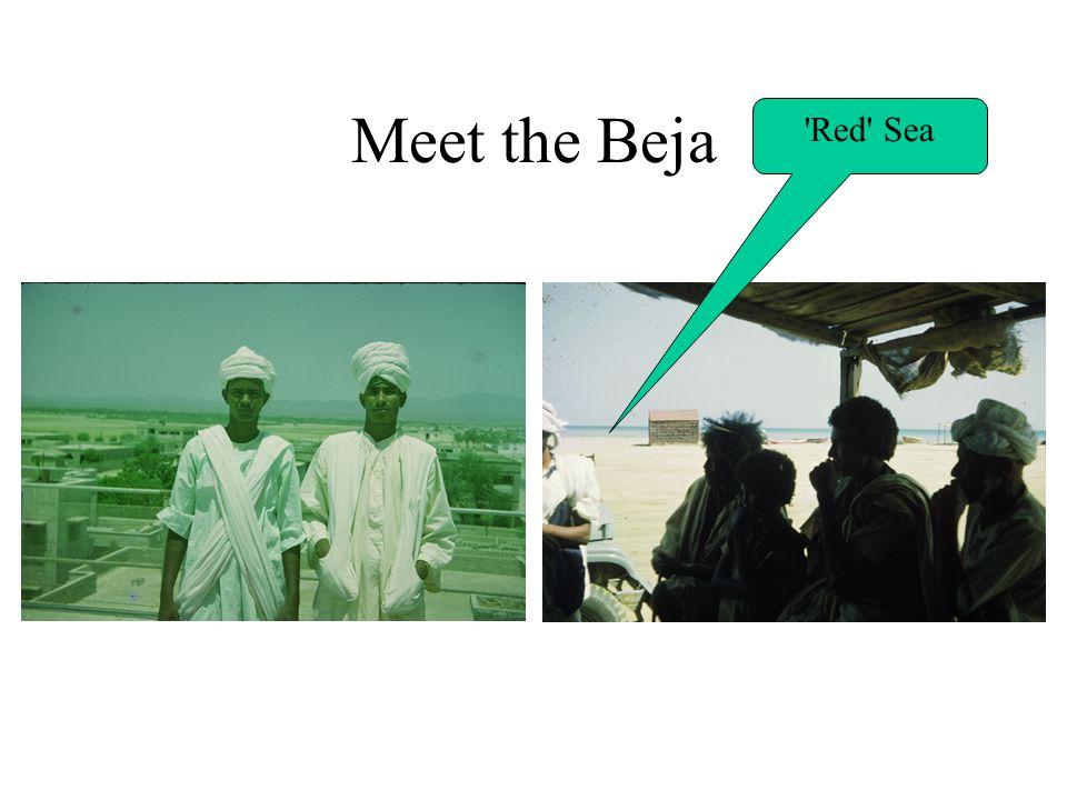 Meet the Beja Red Sea