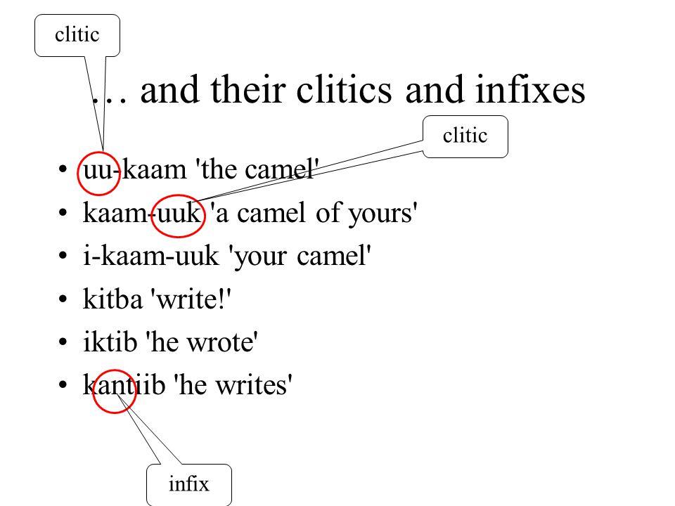 … and their clitics and infixes uu-kaam the camel kaam-uuk a camel of yours i-kaam-uuk your camel kitba write! iktib he wrote kantiib he writes clitic infix clitic