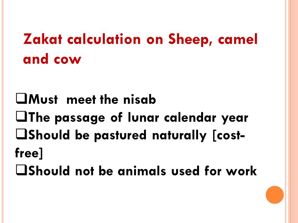 Zakat calculation on Sheep, camel and cow  Must meet the nisab  The passage of lunar calendar year  Should be pastured naturally [cost- free]  Sho