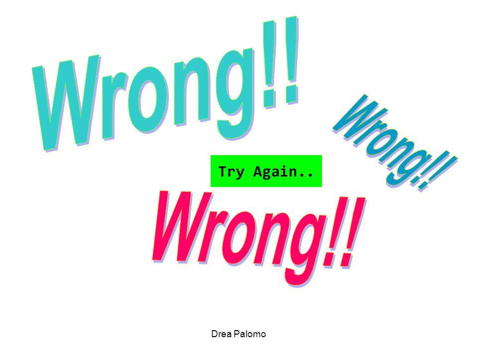 Drea Palomo Try Again..