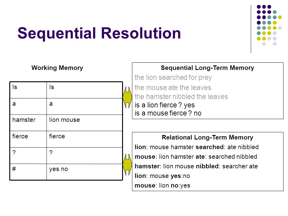 Sequential Resolution Sequential Long-Term Memory the lion searched for prey the mouse ate the leaves the hamster nibbled the leaves is a lion fierce