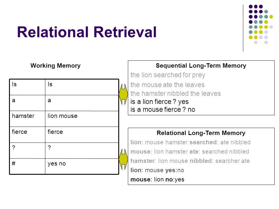 Relational Retrieval Sequential Long-Term Memory the lion searched for prey the mouse ate the leaves the hamster nibbled the leaves is a lion fierce ?