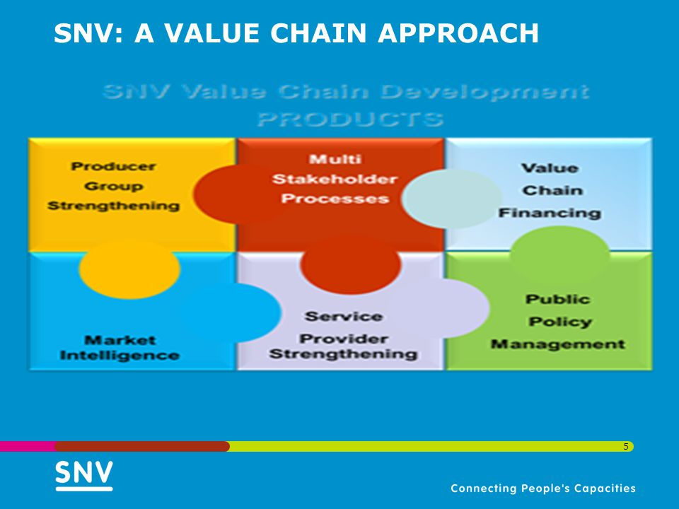 SNV: A VALUE CHAIN APPROACH 5